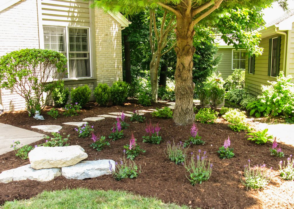 Does Your Shade Garden Look Outdated Dull And Colorless In This Informative Work We Ll Review Plants That Thrive Shady Areas Re Not Just